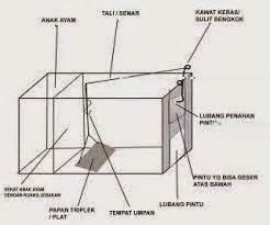 Berapa Kawat Ram mr owl cara membuat jebakan garangan dan musang
