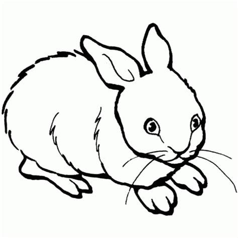 imagenes infantiles para colorear de animales maestra de infantil animales dom 233 sticos para colorear