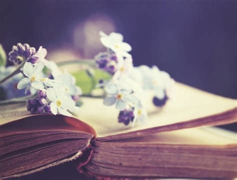 flower books book flower flowers photo photography image