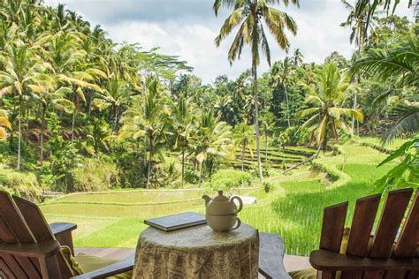 Bali Health Detox Resorts oneworld ayurveda panchakarma center in ubud bali