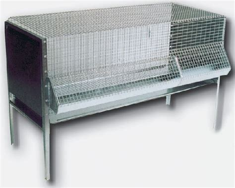 gabbie per polli nome gabbia per pulcini e polli ingrasso cm 100 attrezzature