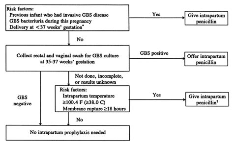 group b strep c section delivery specific bacterial infections group b streptococcus glowm