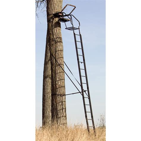 tree stand 20 the skybox deluxe ladder tree stand from big