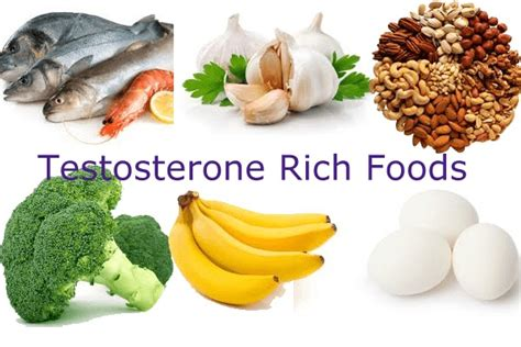 healthy fats to increase estrogen testosterone diet 10 foods you cannot ignore