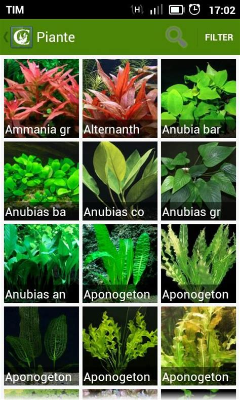 Artificial Plants For Tropical Fish Tanks - hyplants aquarium plants android apps on google play