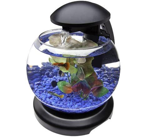 model  harga aquarium mini  budidaya ikan