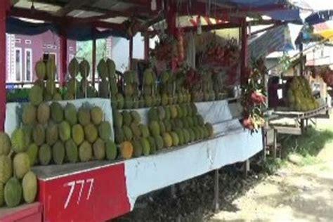 lokasi   bisa langsung makan durian