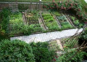 Small Backyard Vegetable Garden Ideas Ferdian Beuh Design Your Landscape 85022 Restaurants