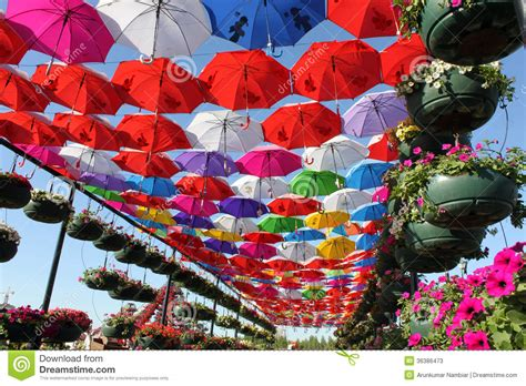 Colorful Umbrella pathway stock image. Image of spring