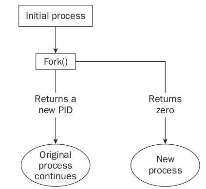 tutorial linux fork program to implement system calls using fork function