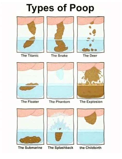 Floating Or Sinking Stools by Types Of The Snakethe Deer The Titanic The Floater