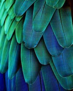 definition of analogous colors analogous colors definition exles and schemes color