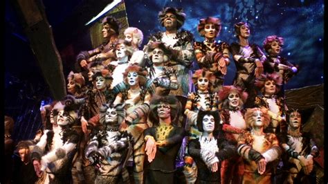 cats musical cats the musical a preview great performances pbs