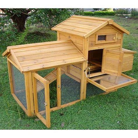 galline in giardino pollaio in legno quot padovana quot il verde mondo