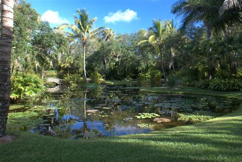 mckee botanical gardens panoramio photo of pond at mckee botanical gardens