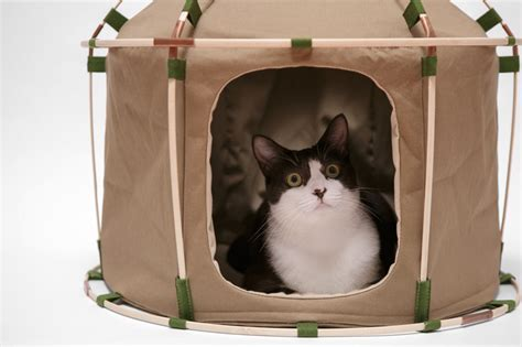 designboom cat furniture pitch your pet the perfect abode with the cat study house