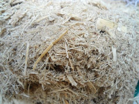 How To Make Paper From Sugarcane Waste - bagasse