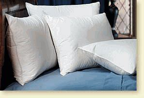What Pillows Does Hton Inn Use by Pacific Coast Touch Of Standard Pillow Set 4