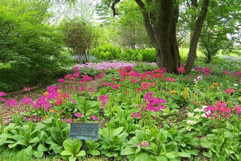 Berkshire Botanical Garden Berkshire Botanical Garden Stockbridge Chamber Of Commerce Stockbridge Ma