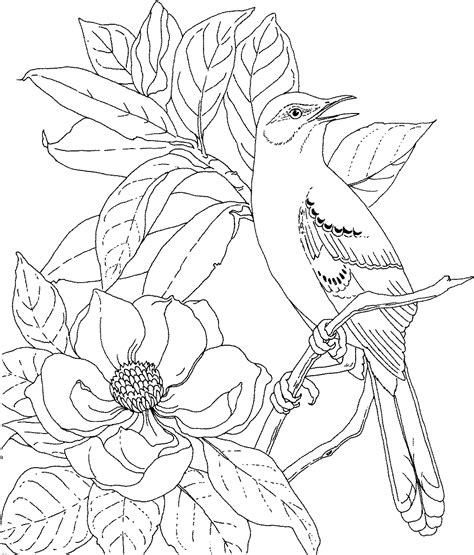 coloring pages of real roses birds and flowers coloring pages pictures imagixs