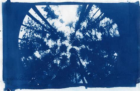 cyanotype photography