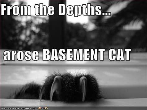 Basement Cat Ceiling Cat basement cat folkloregonian