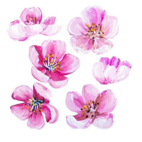 Painted Flower painted flowers collection vector premium