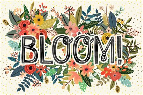 flower bloom bloom flower collection illustrations on creative market