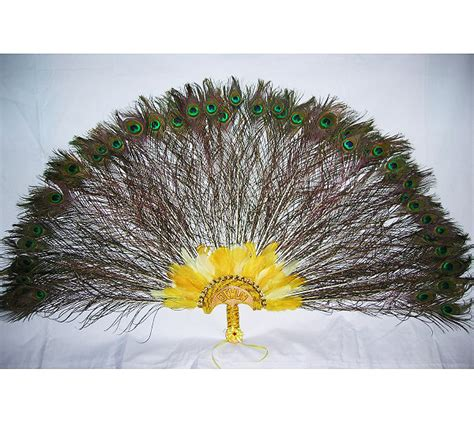 extra large feather fans extra large peacock feathers fan for oshun abanico grande