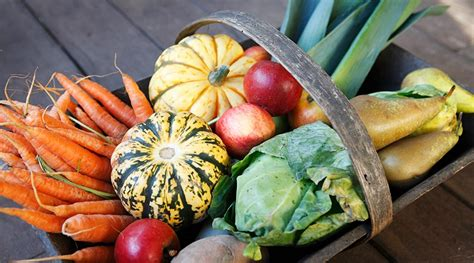 harvest fruit  vegetables