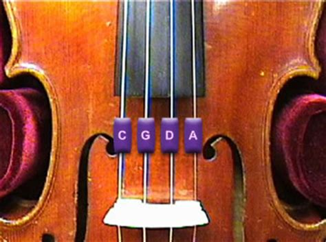 Senar Biola Vision Violin String michael watson tune viola with mp3