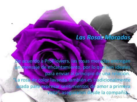 imagenes de rosas negras y moradas significado de las rosas