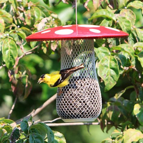 bird feeders no no msb00344 mesh bird feeder patio lawn garden