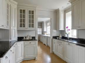 Crown Molding Ideas For Kitchen Cabinets Kitchen Cabinet Crown Molding Design Ideas