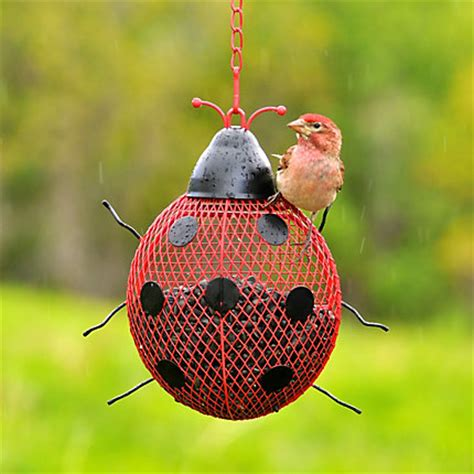 no no 174 ladybug mesh wild bird feeder model rsb00344
