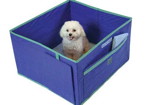 indoor puppy potty pack n piddle portable indoor pet potty