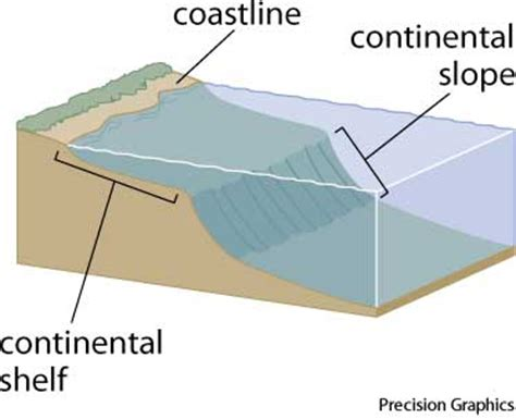 Meaning Of Shelf continental shelf dictionary definition continental