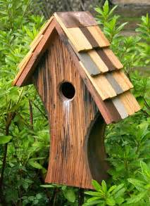 cool bird house plans best photos of unique bird house plans unusual bird