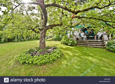 tree in the middle of a garden with people on veranda