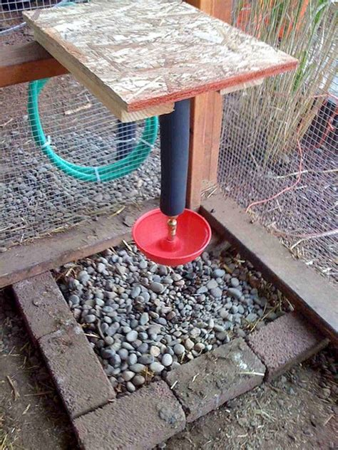 chicken diy 20 to make projects for happy and healthy chickens books chicken water station ideas the owner builder network