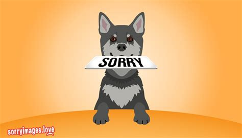 sorry puppy sorry images for sorry puppy