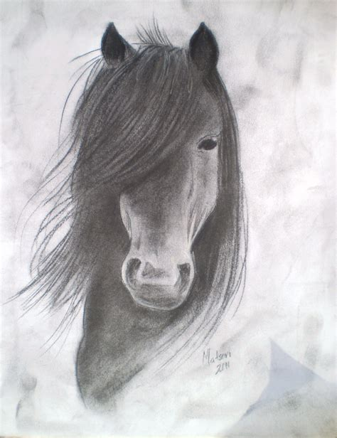 Sketches Horses by Charcoal Drawing Of