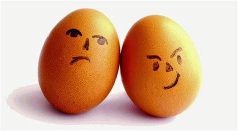 imagenes de huevo zen huevos y colesterol 191 cu 193 ntos comer al d 205 a