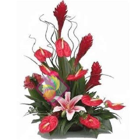 fiori esotici lucrezia spediamo fiori dolci e regali a domicilio