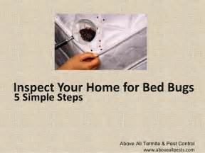 how to tell if you bed bugsthe world of answers the