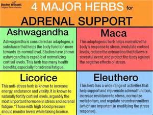 adrenal fatigue diet reset your energy balance your hormones and boost your serotonin dopamine and oxytocin books 313 beste afbeeldingen bijnieruitputting adrenal