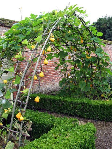 Veggie Garden Arch Arch At Entrance To Walled Kitchen C Simak