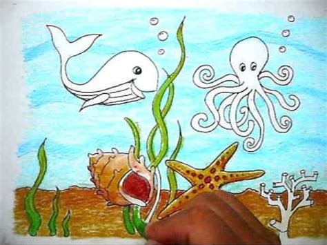how to color the picture of sea cara mewarnai gambar kehidupan dalam laut