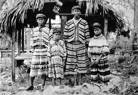 the seminole indians of florida genealogy trails happy a seminole perspective on ponce de le 243 n and florida