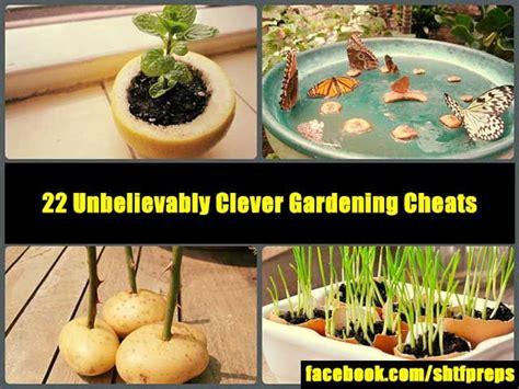 gardening plants gardening tips garden